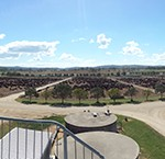 Rangers Valley Tour - panorama view from the tower