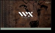 WX-carton
