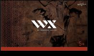 WX-cartons5
