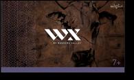 WX-cartons7
