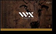 WX-cartons9