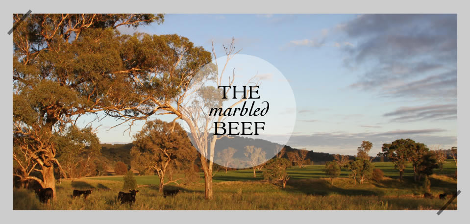 The marbled Beef - Rangers Valley
