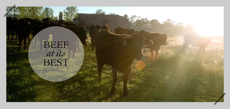 Beef at its Best - Rangers Valley